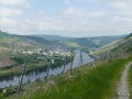 Zwischen Enkirch und Reil