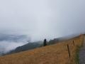 Regenwolke im Anflug