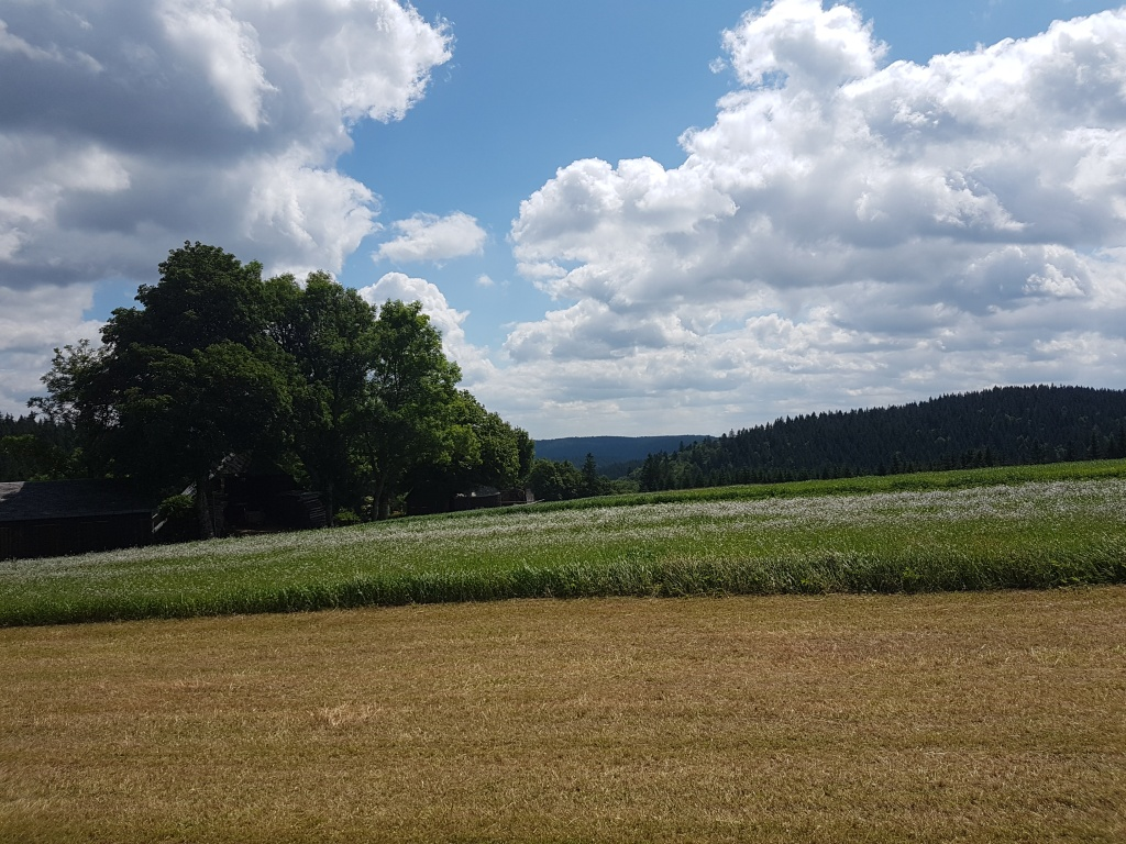 Landschaft I