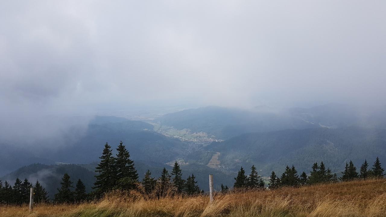 Richtung Staufen (Breisgau)